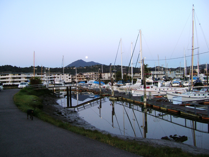 Photograph of Marin Harbor
