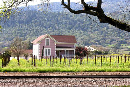House in a Napa County vineyard