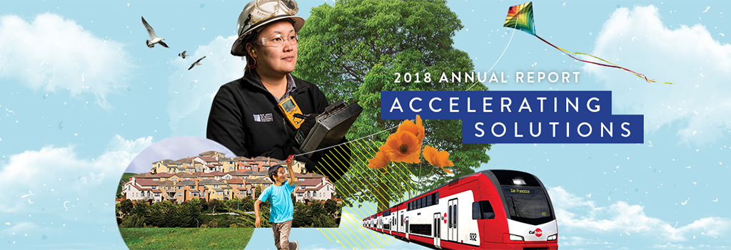 2018 Annual Report - Accelerating Solutions