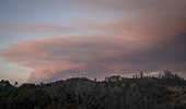 Wildfire sky in Bay Area